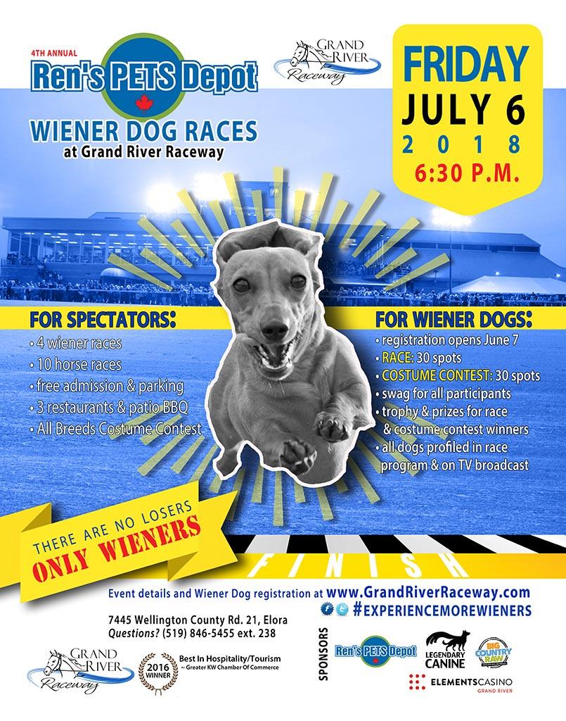 wiener dog race poster